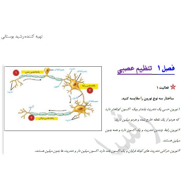 پاسخ فعالیت 1 فصل 1 زیست یازدهم