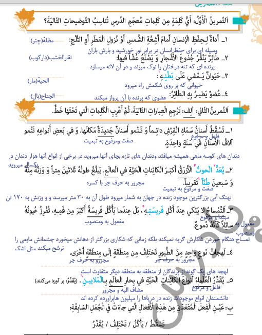 حل تمرین درس 3 عربی یازدهم انسانی