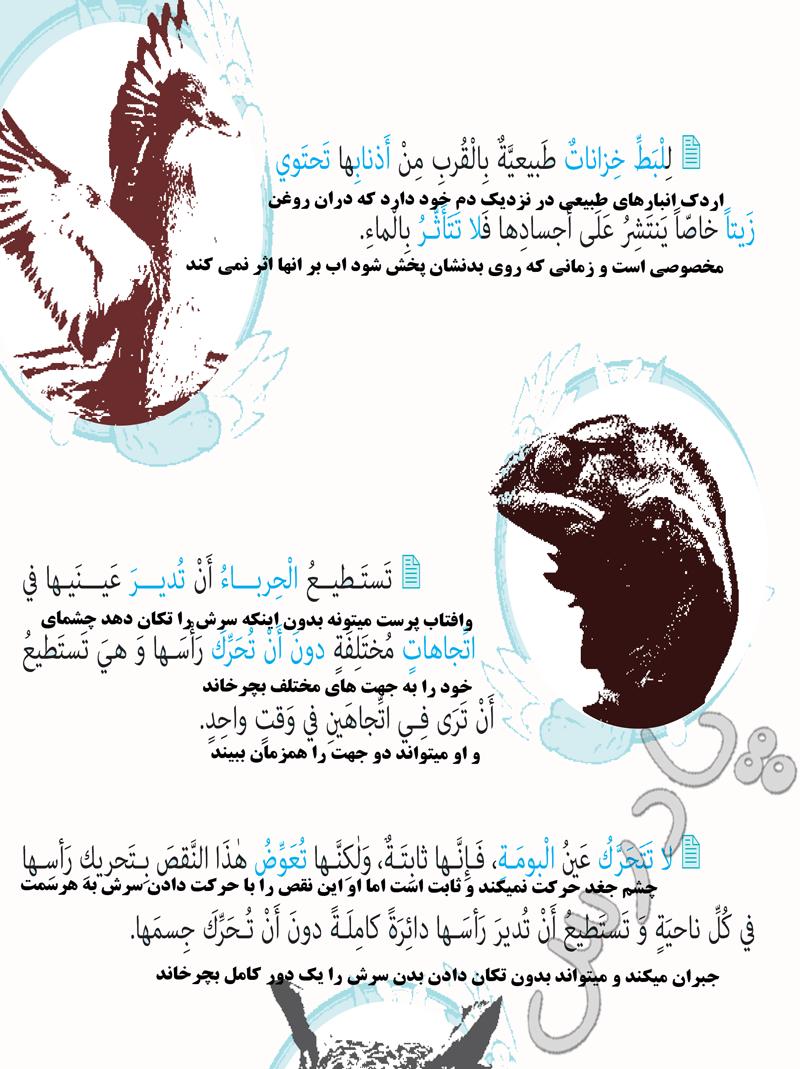 ادامه ترجمه درس 5 عربی دهم