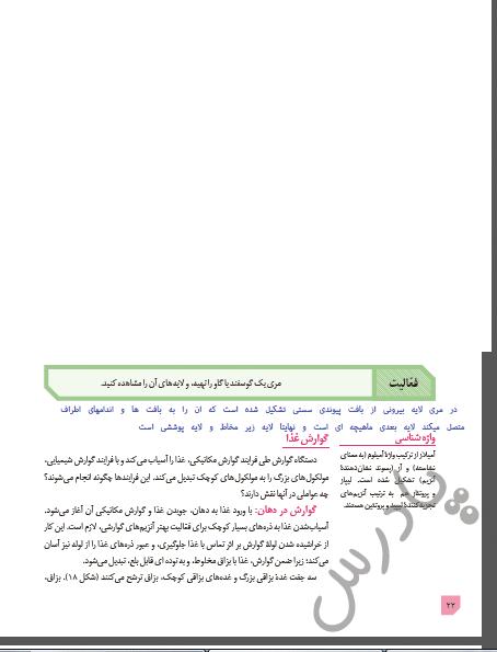 پاسخ فعالیت صفحه 22 زیست دهم