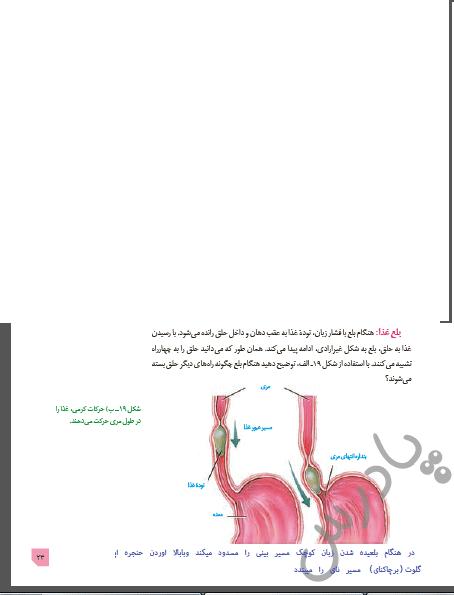 جواب سوال متن صفحه 23 زیست دهم