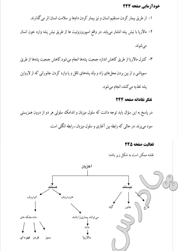پاسخ خودآزمایی و فعالیت ص244و245 فصل 10 زیست پیش دانشگاهی