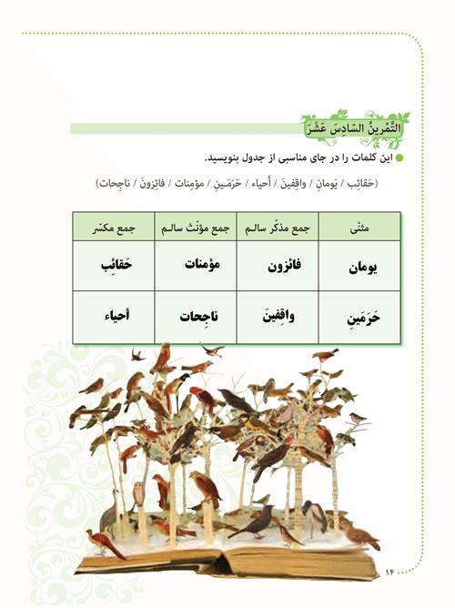 پاسخ تمرینهای صفحه 14 عربی هشتم