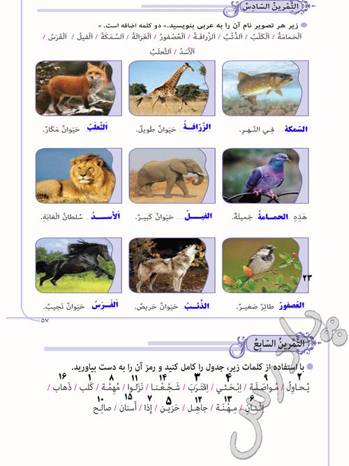 پاسخ تمرین 6 و7 درس 5 عربی نهم
