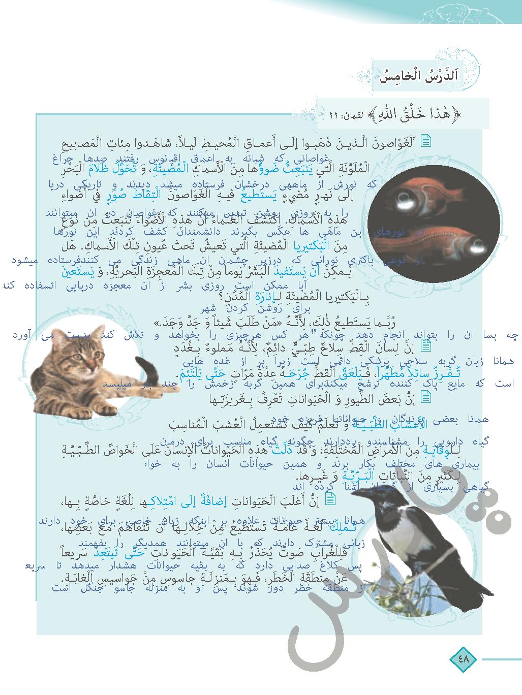 ترجمه درس 5 عربی دهم انسانی
