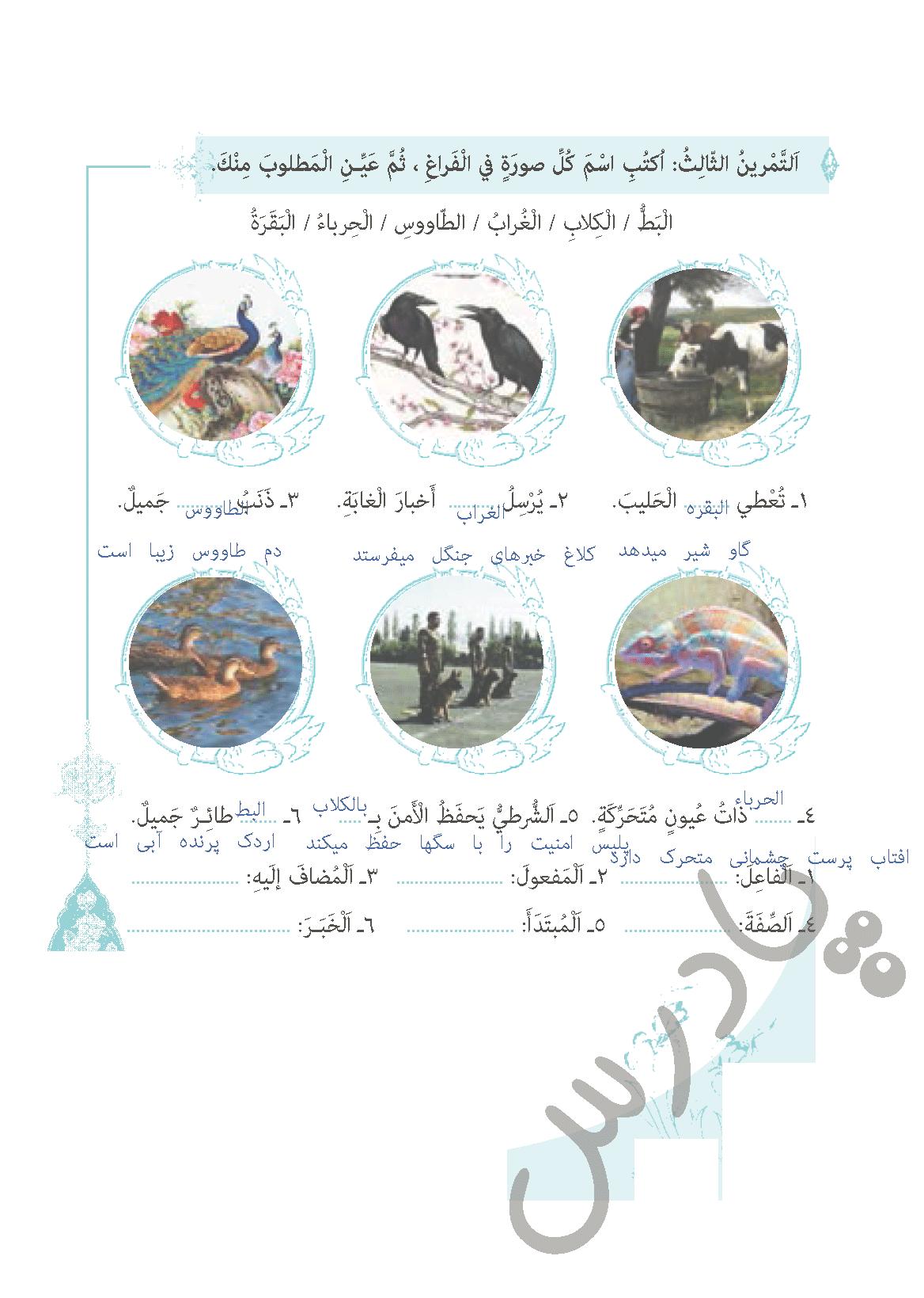 حل تمرین 3 درس 5 عربی دهم انسانی