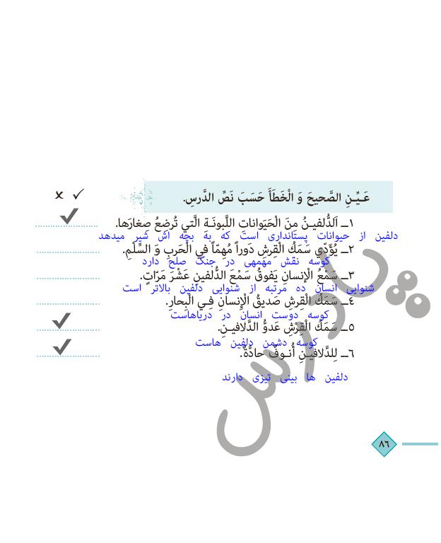 جواب سوالات متن درس 8 عربی دهم انسانی