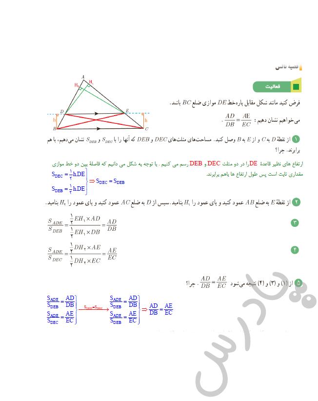 پاسخ فعالیت صفحه 34 فصل 2ریاضی یازدهم