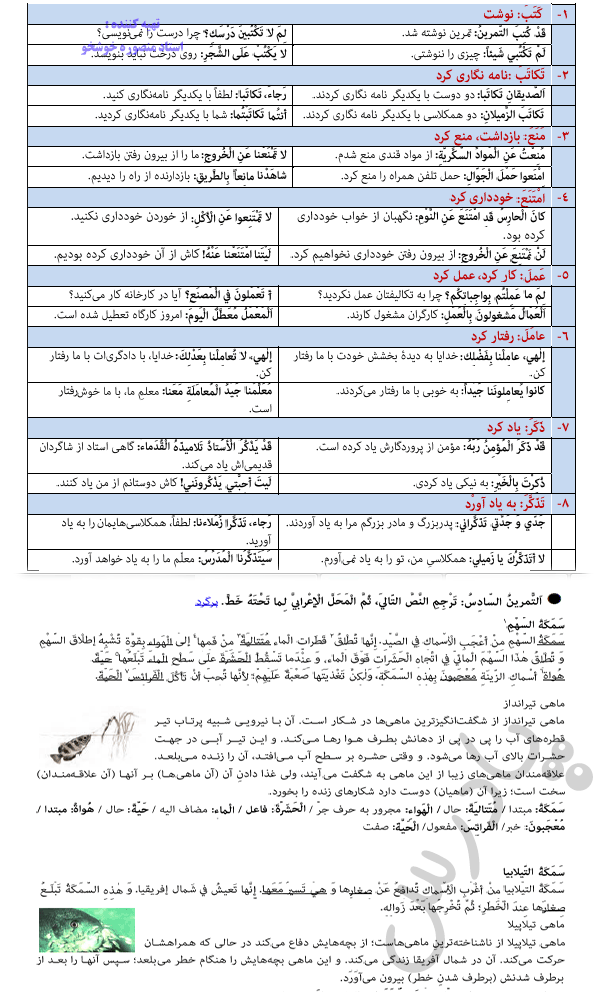 ادامه حل تمرین درس 2 عربی دوازدهم