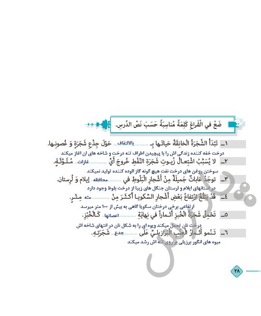 حل تمرین متن درس3 عربی دوازدهم هنرستان